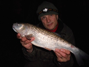 Another good canal chub