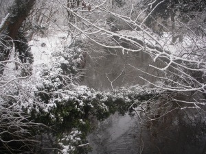 The Stour in the snow