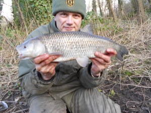 Another great canal chub