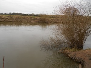 The Severn, fishable at last