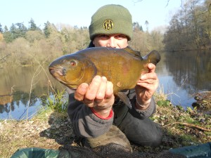 A tench caught on M2 pop-up