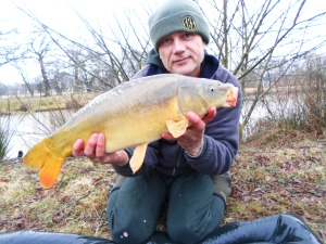 A dawn carp on the bank