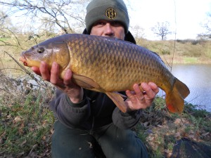 Tea-time fish on session two