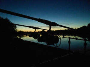 Rods out well into dusk