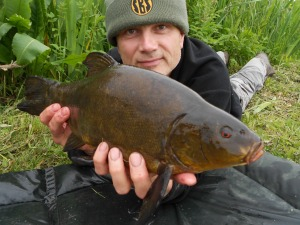 Tench number four of the session