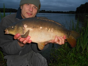 A dusk carp on session four