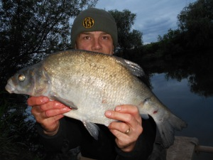 A lower Severn bream