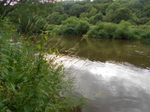 The middle Severn in August
