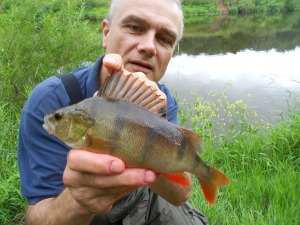 The perch from Severn session one