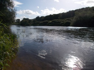 The middle Severn