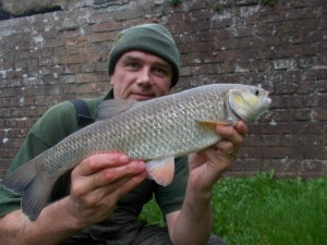 The first canal chub