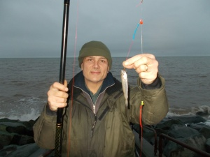 A small whiting