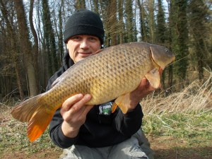 Another Seggy carp
