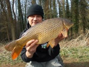 Another Seggy carp
