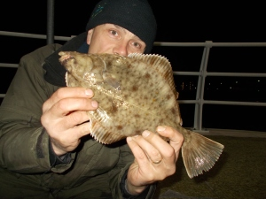 Another Rhyl harbour fish