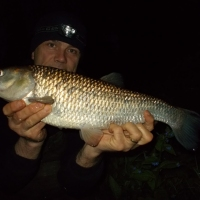 A LITTLE BIT OF WHAT YOU FANCY  (Staffs/Worcs Canal chub) - Blog entry 570