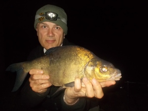 A small bream, but all are welcome