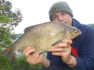 Not all bream are totally nocturnal