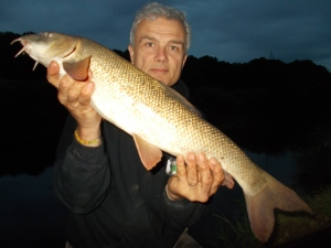 Long and lean, a dusk Severn barbel