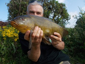 The second tench of the week, followed by two blanks