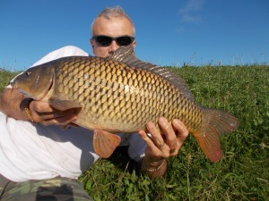 Off the mark with a common in bright sunshine