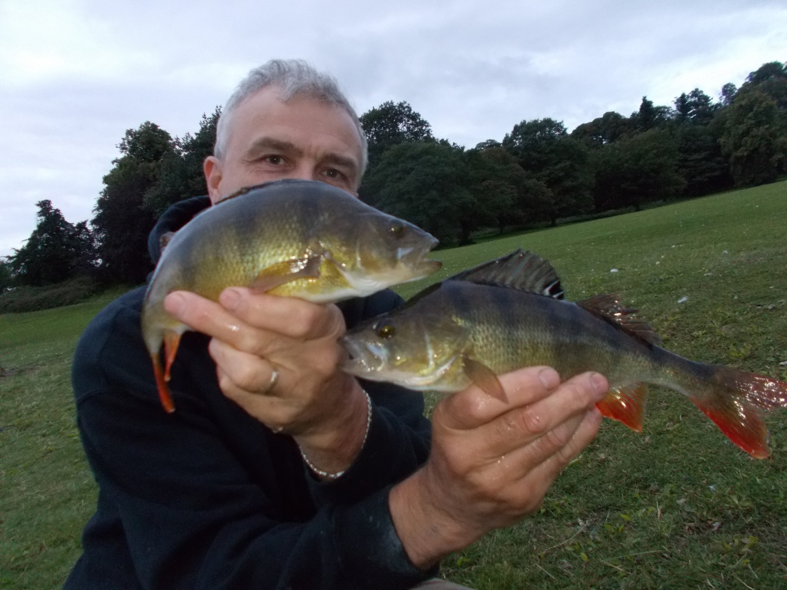 You can't beat a brace of fish photo