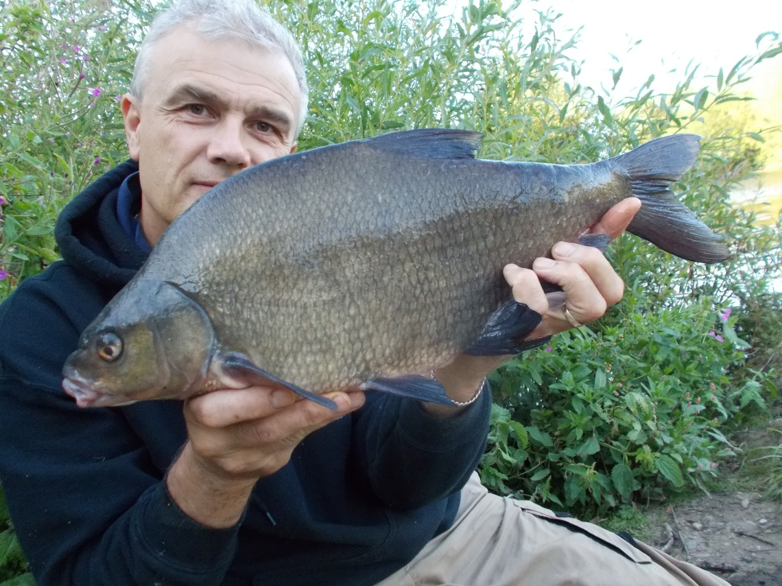 The final bream of the week