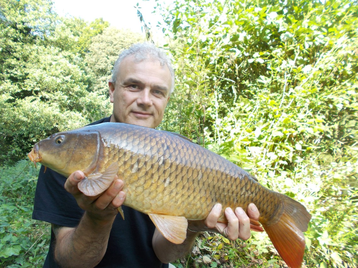 Another Seggy Pool carp on the bank
