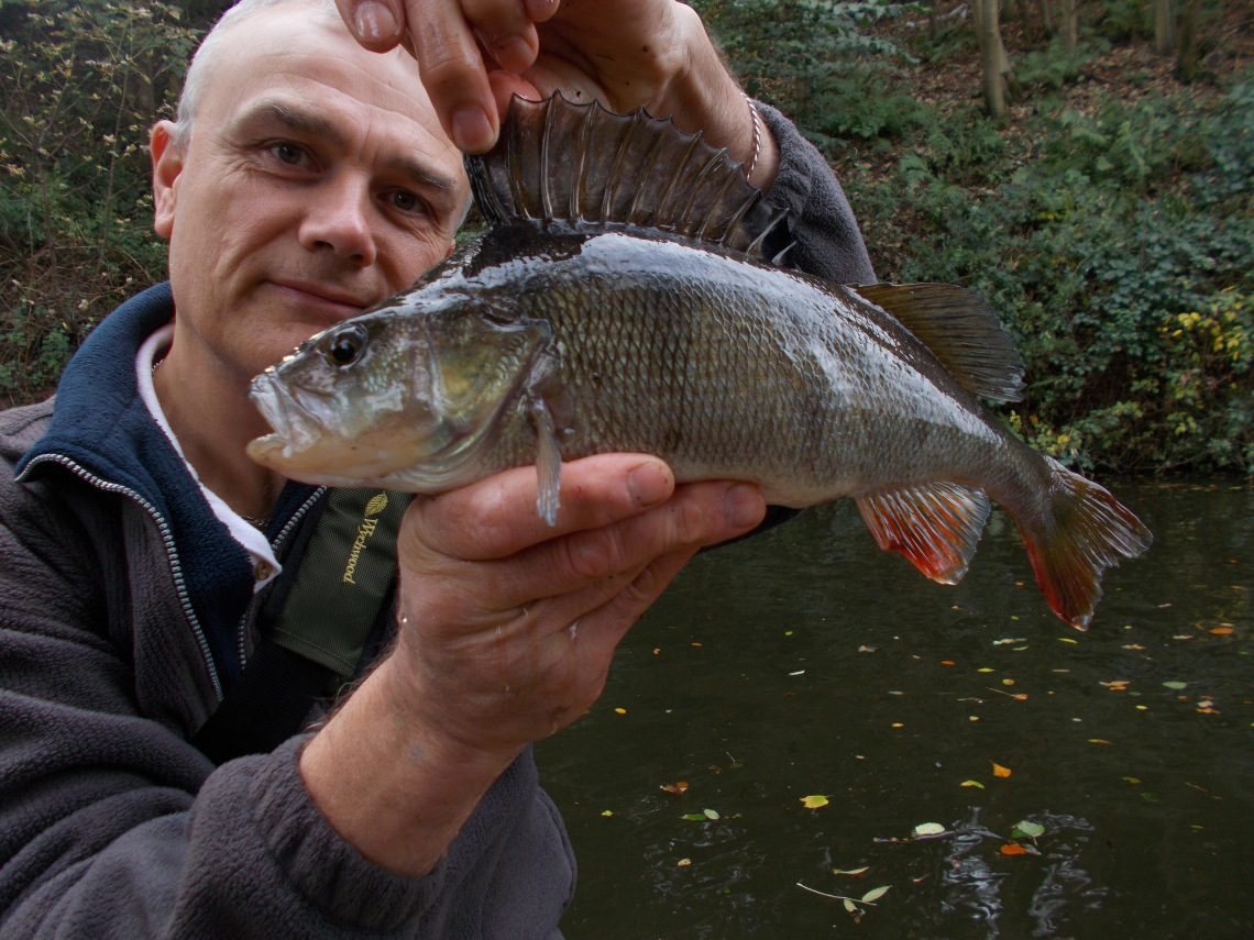 The best fish of the week, from the Staffs/Worcs