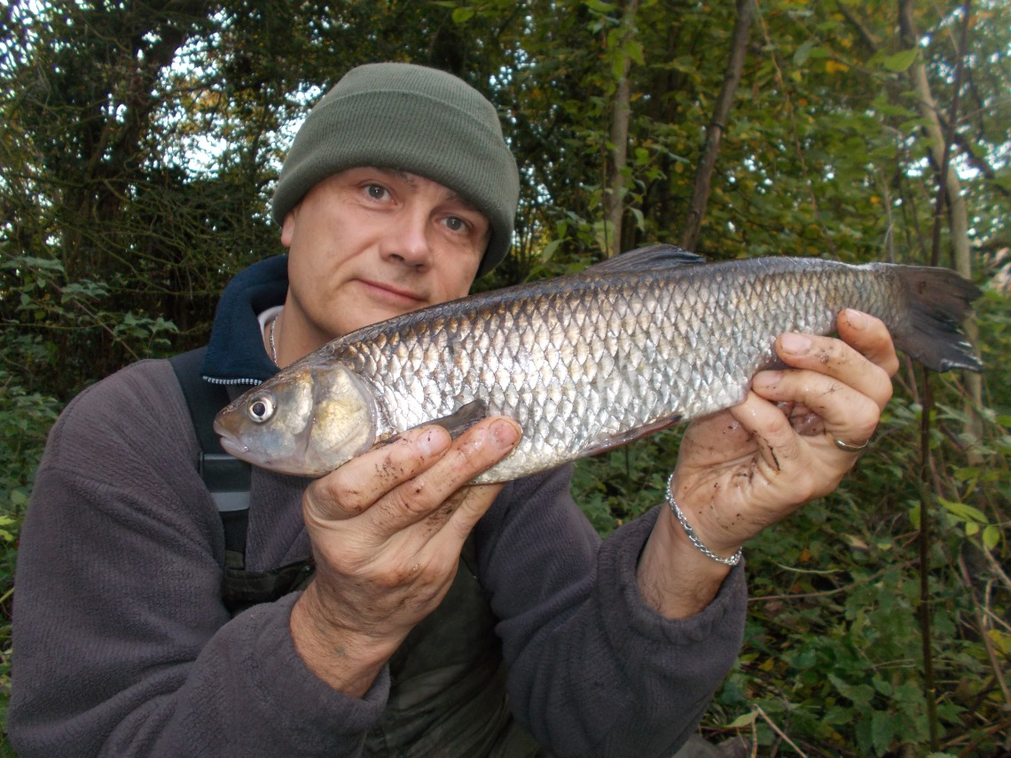 I enjoy my canal chub fishing
