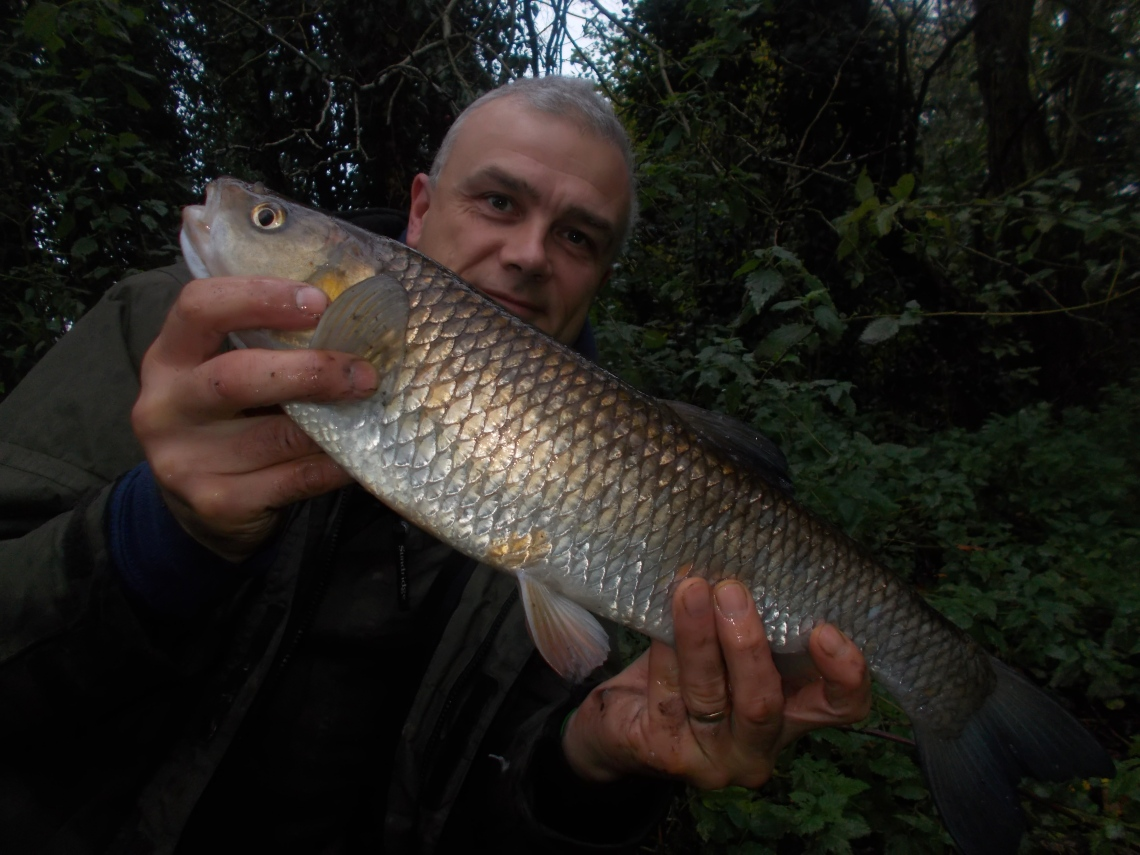 Another chub on the bank