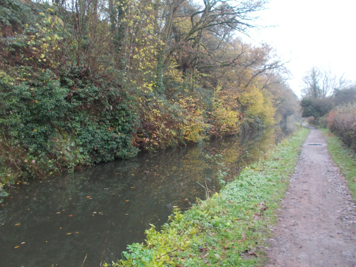 The Staffs/Worcs Canal in early December