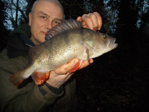 The best fish of the week, a true canal cracker
