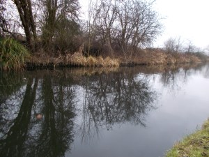 The Staffs/Worcs Canal in February