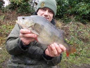 A new pb Staffs/Worcs Canal perch