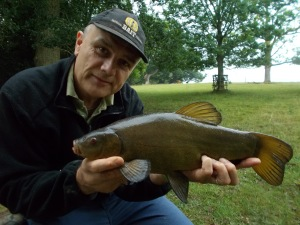 A tench on the bank