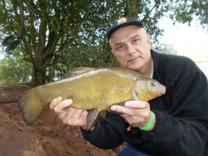 I do enjoy tench fishing, they're a great species