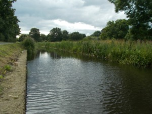 Canals feature very much in this week's fishing