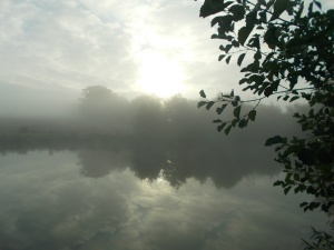 A misty start to the day