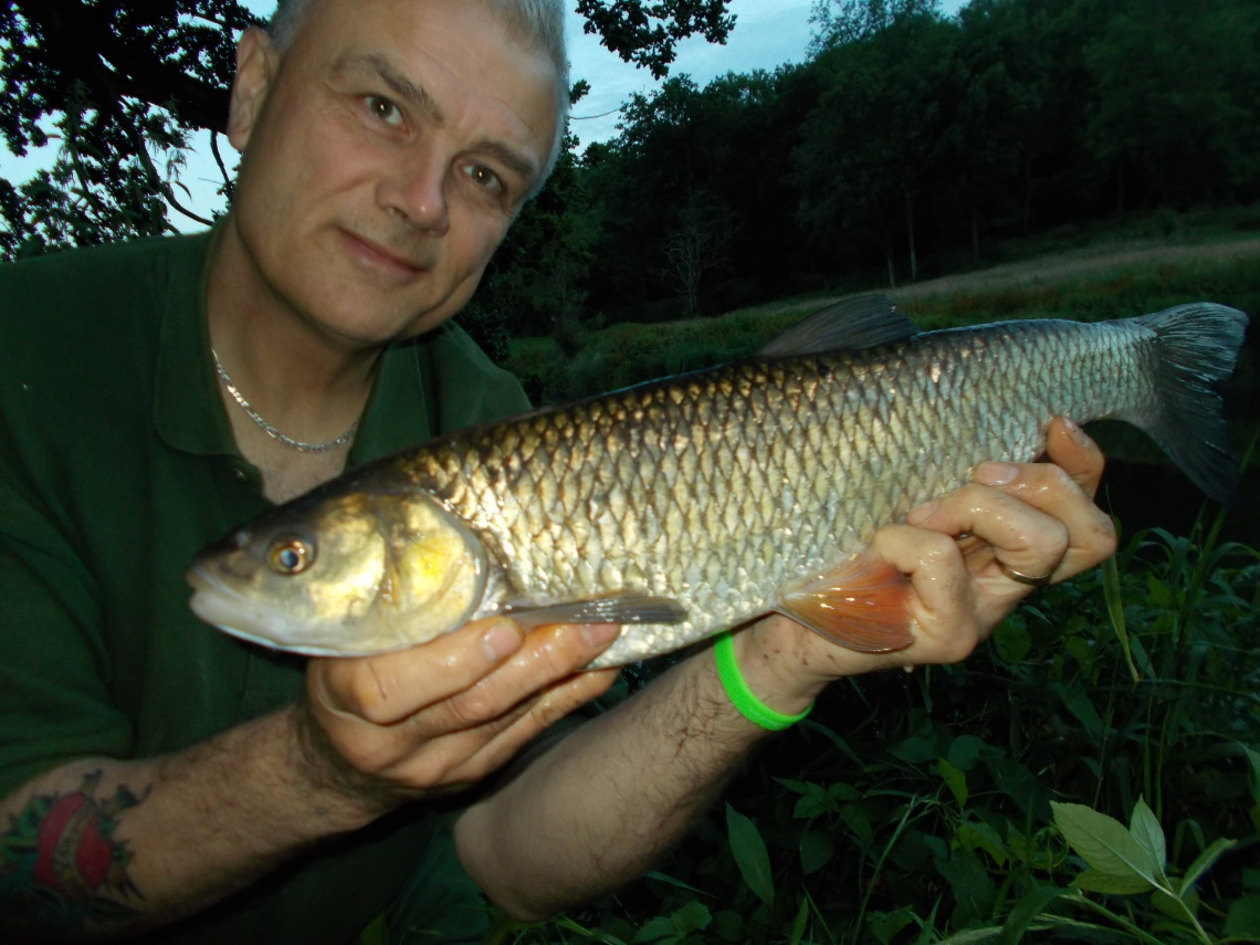 A July barbel, back in t-shirt weather