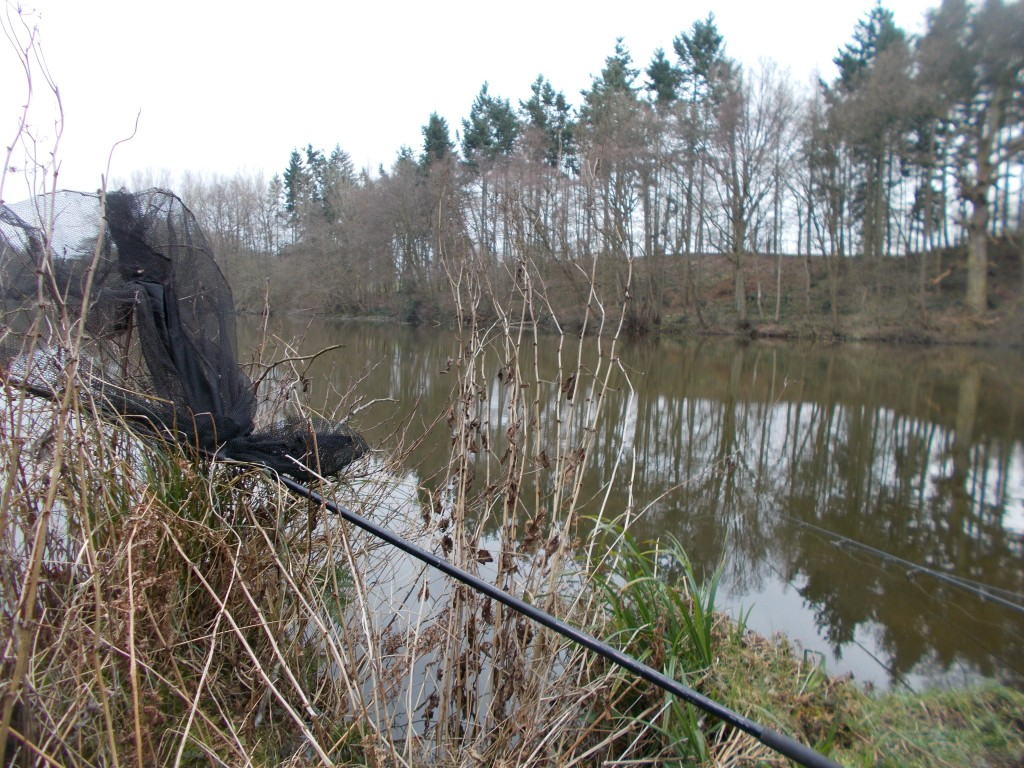 The rods are out and the net's ready and waiting