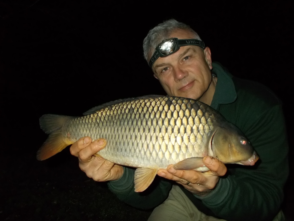 First fish, a small common