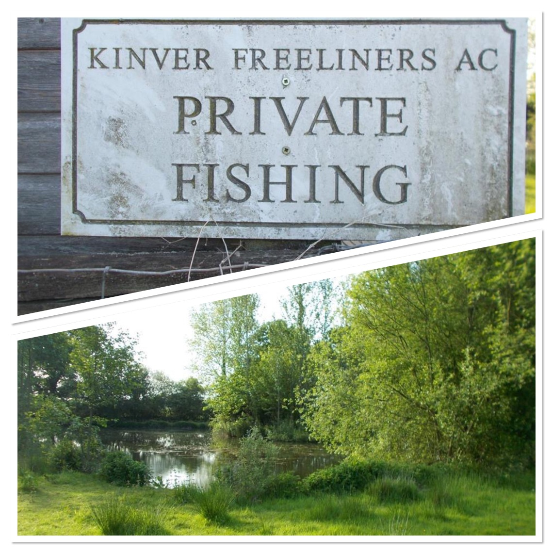 Kinver Freeliners - a great club to be part of