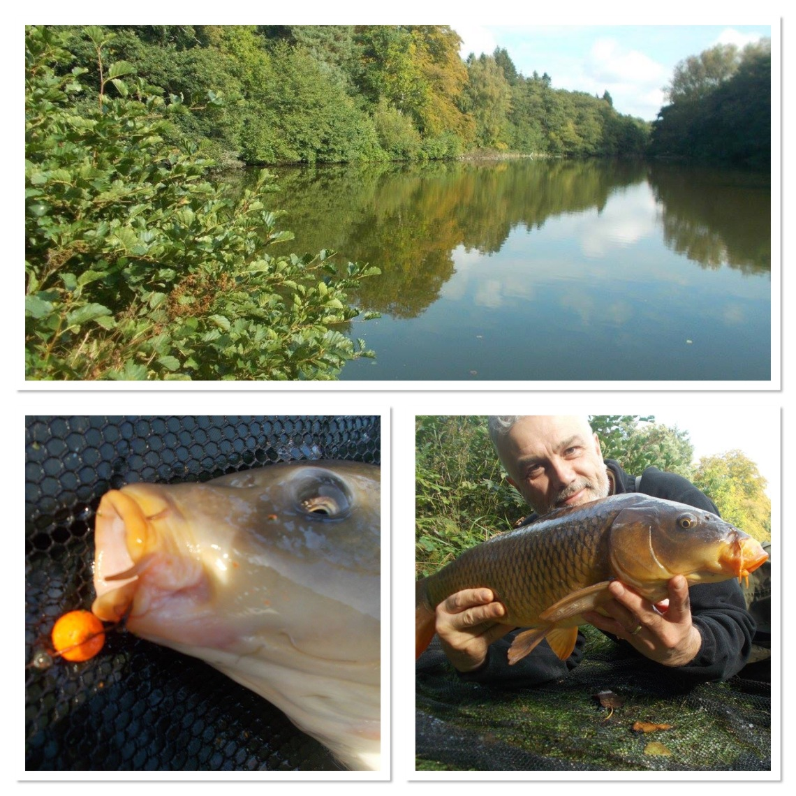 A nice venue and carp on the bank