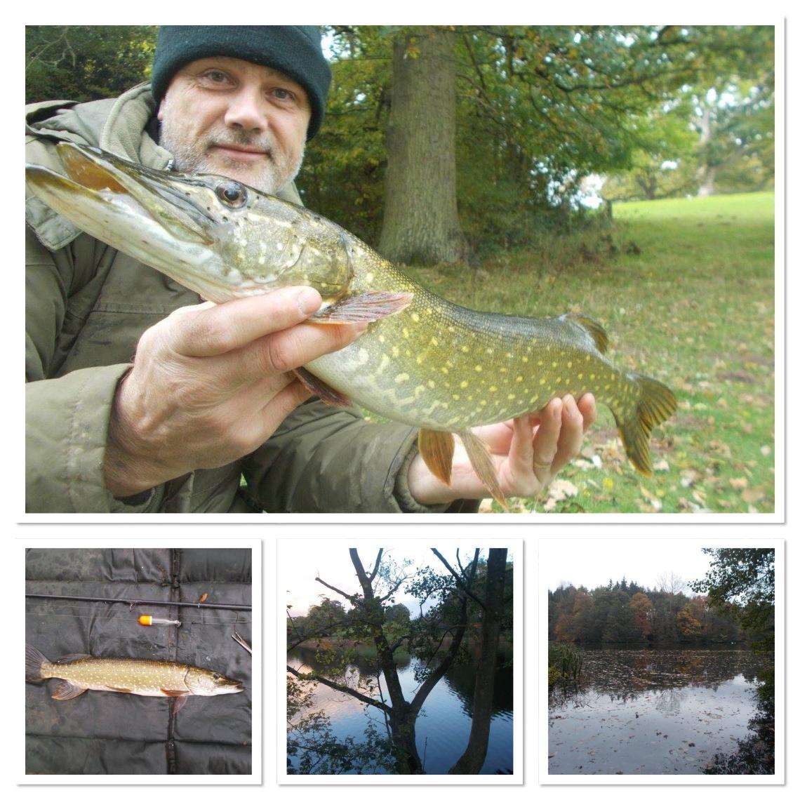 Pike fishing in Shropshire