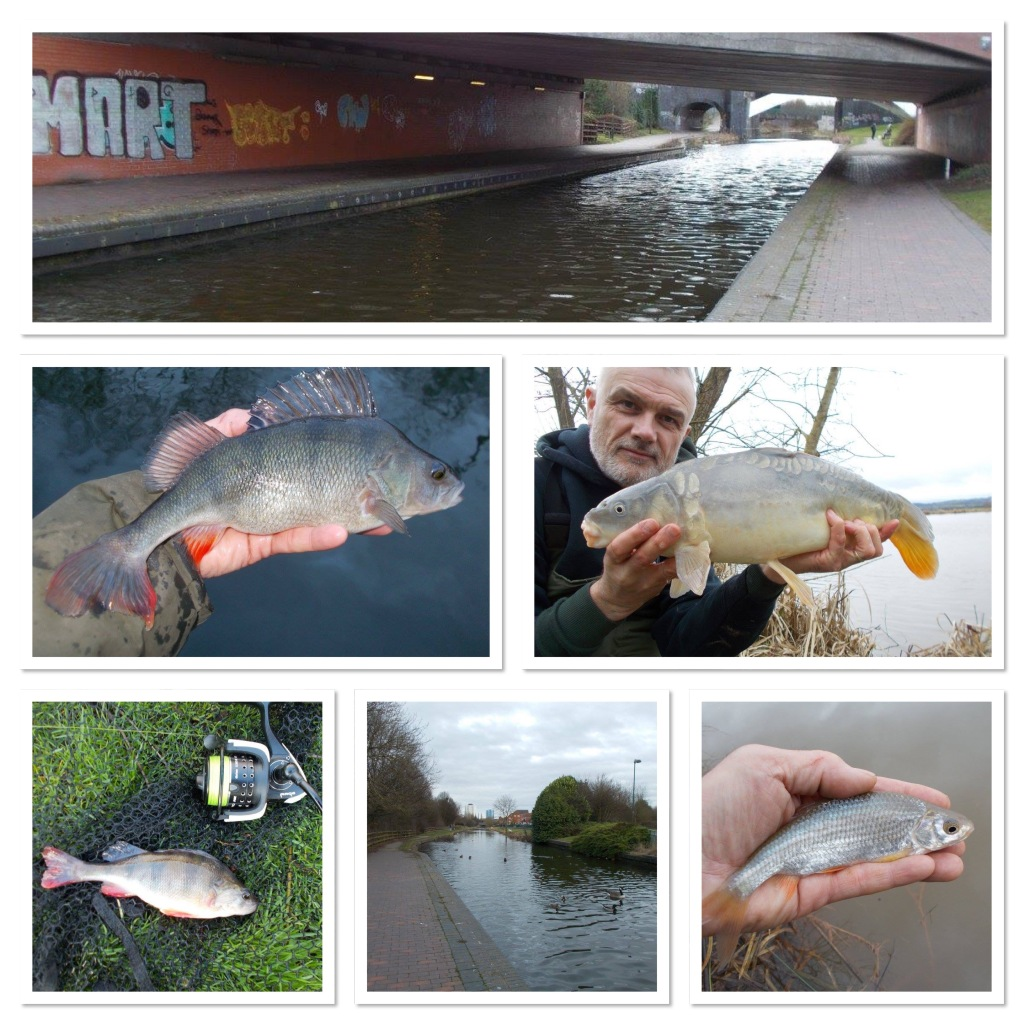 Angling photos from this week