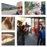 CANAL FISHING, ASTON VILLA, GUINNESS WORLD RECORDS (Blog entry 717)