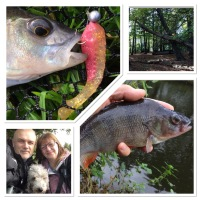 Jigging For Perch, My Week On Facebook - Blog Entry 744