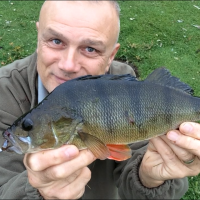 Like Visiting Angling Blogs? Read On...