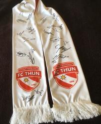 2. FC Thun 1/2